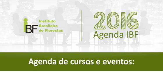 Agenda IBF