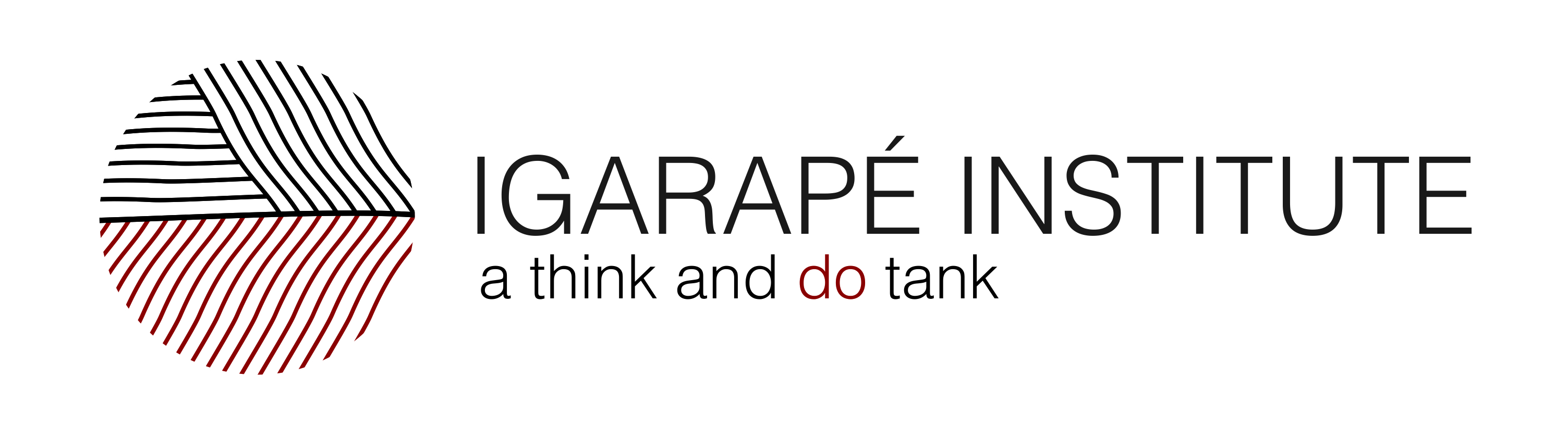 Instituto Igarapé - a think and do tank