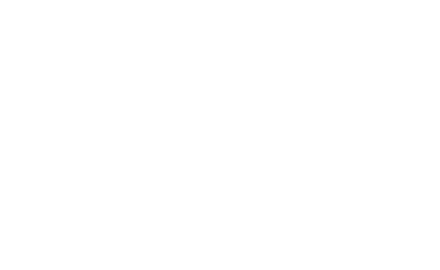 Pro Security