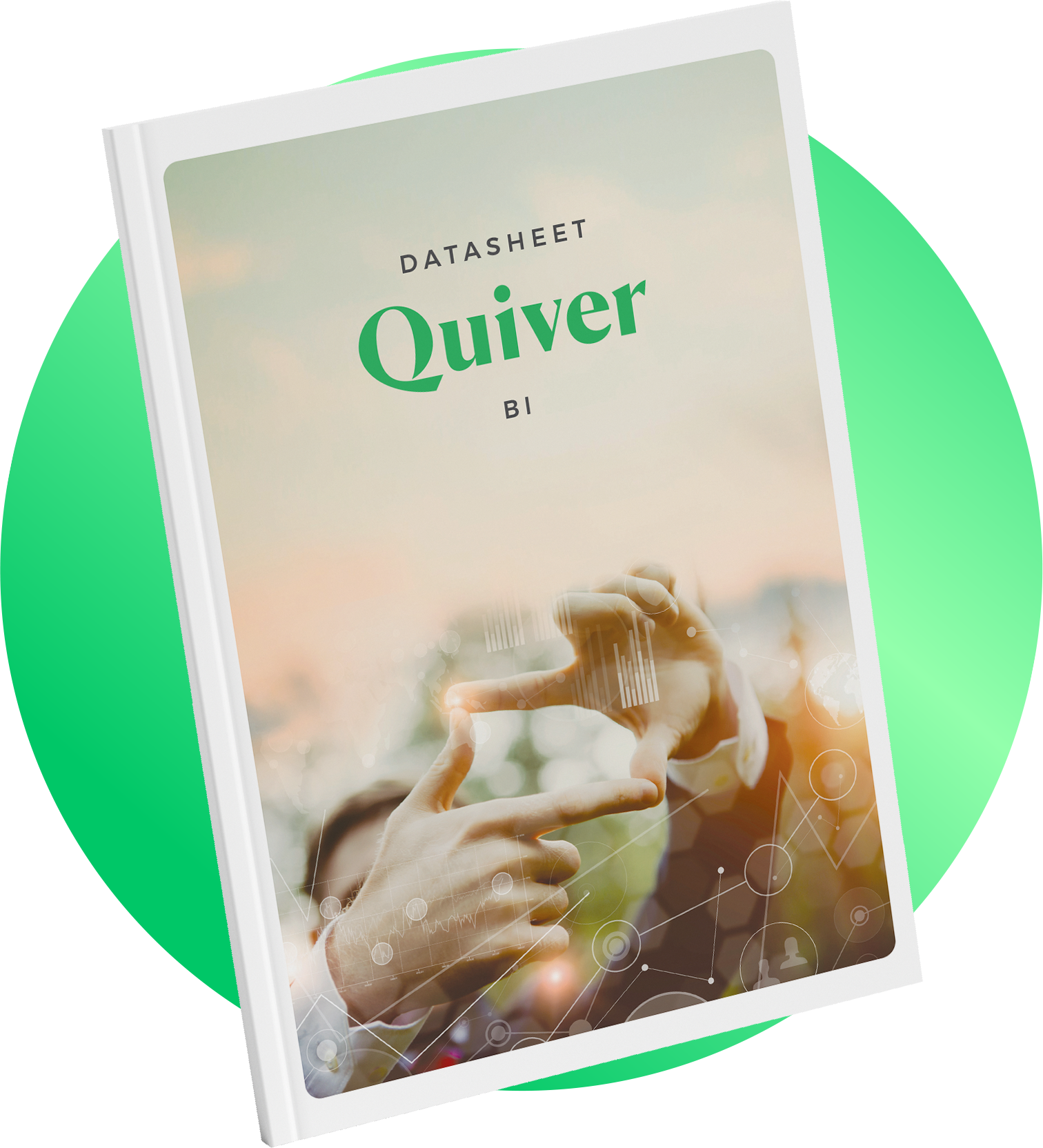 Quiver BI