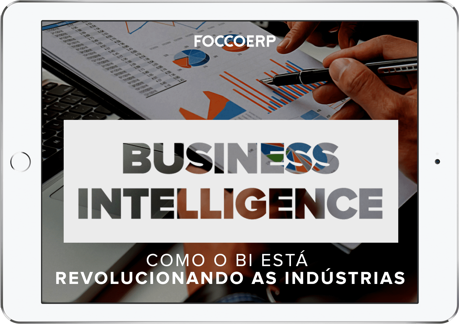 iPad business intelligence - revolucionando a industria