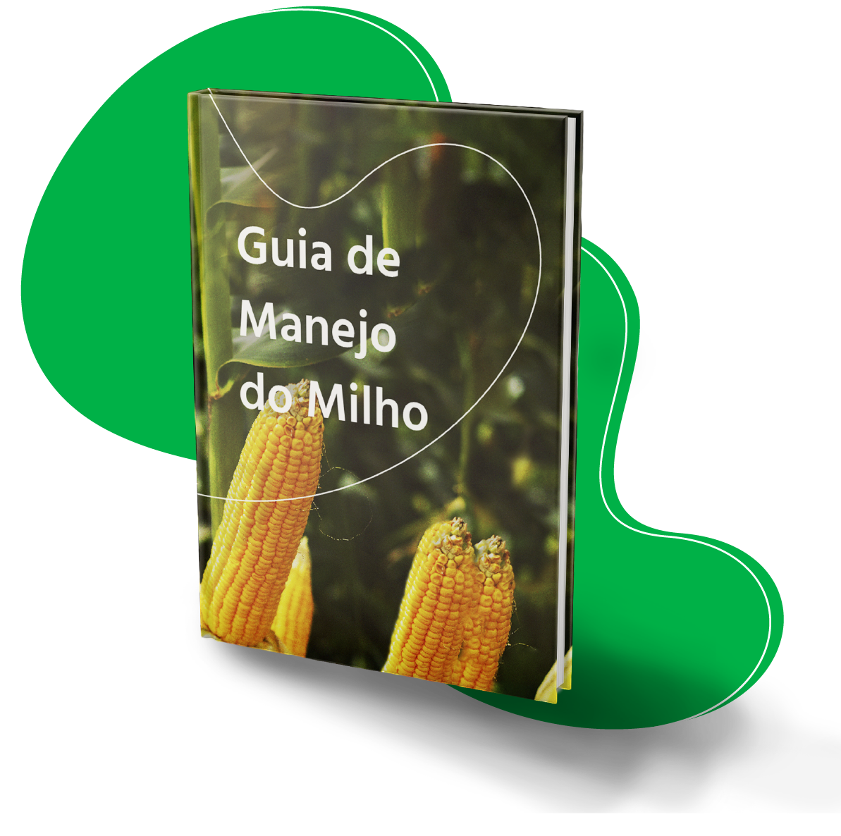 Guia de manejo do milho (meramente ilustrativo)
