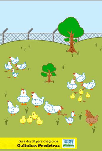 Guia Digital para criação de galinhas poedeiras