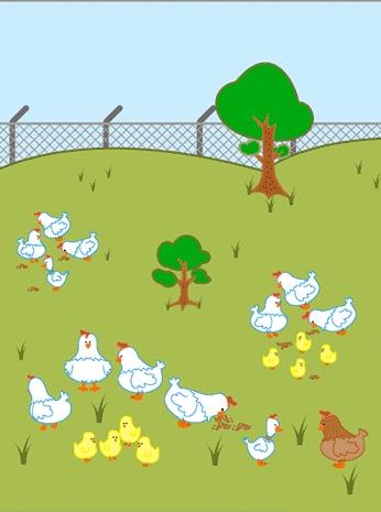 Guía digital para la crianza de gallinas ponedoras