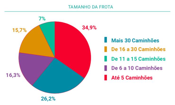Relatório Perfil das Transportadoras Brasileiras 2018