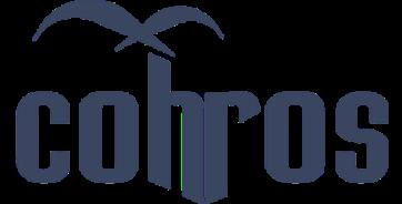 Cohros - Tecnnologia RH