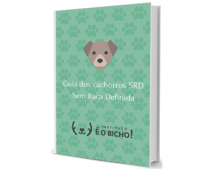 Guia do vira lata, ops, cachorro SRD