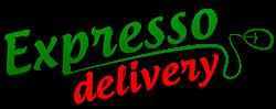 Expresso-Delivery-Sistema-Pizzarias