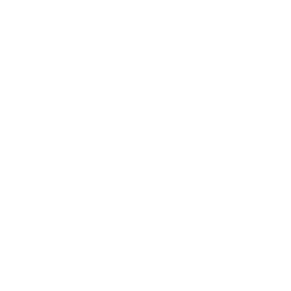 autoforce logo branca