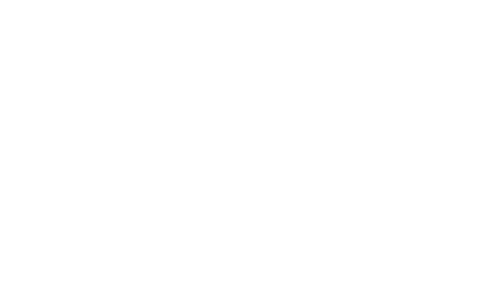 ProMove Logo