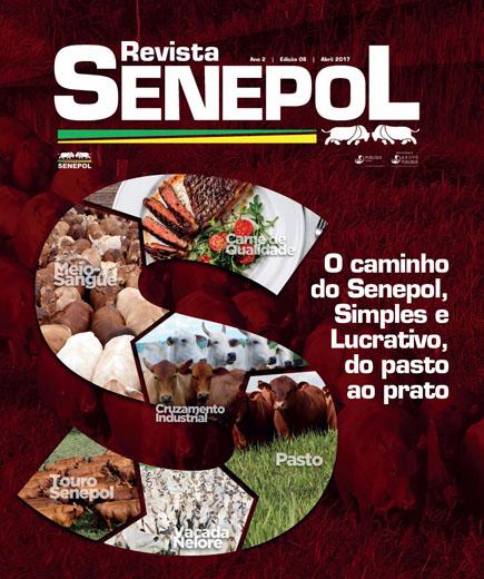Revista Senepol 06