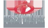 Logo Desenvolver