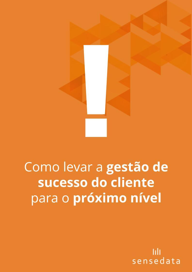 gestão de customer succes
