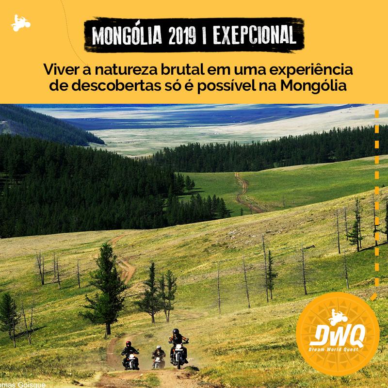 Grupo DWQ Mongólia 2019