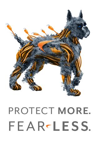 Orçamento Firewall SonicWall - Segurança como serviço