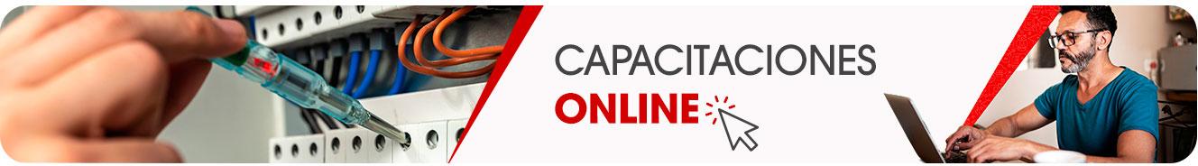 Entrenamiento online