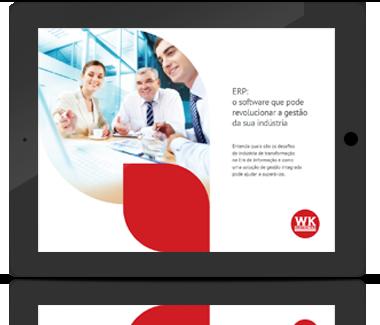 ERP, o software que poder revolucionar a gestão da sua indústria