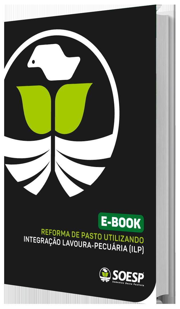 Reforma de pasto utilizando Integração-Lavoura-pecuária (ILP)