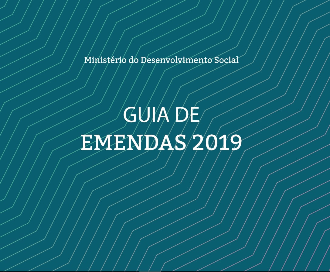 Manual do Ministério do Desenvolvimento Social de emendas parlamentares para 2019