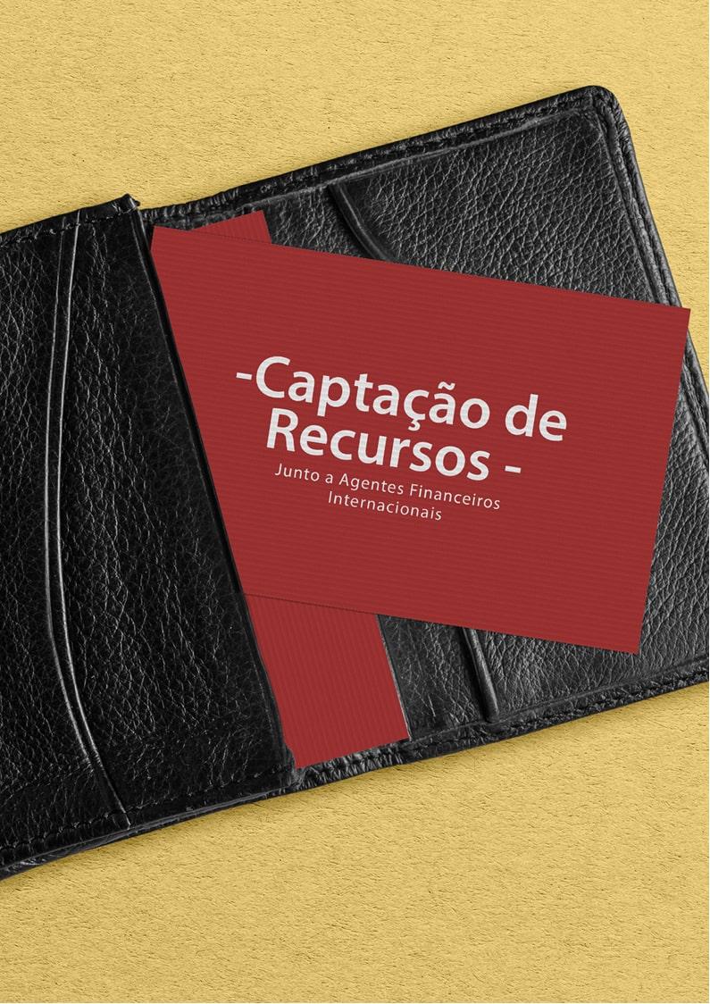 e-Booksobre Captação de Recursos Junto a Agentes Financeiros Internacionais