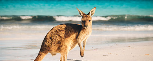 E-book Austrália