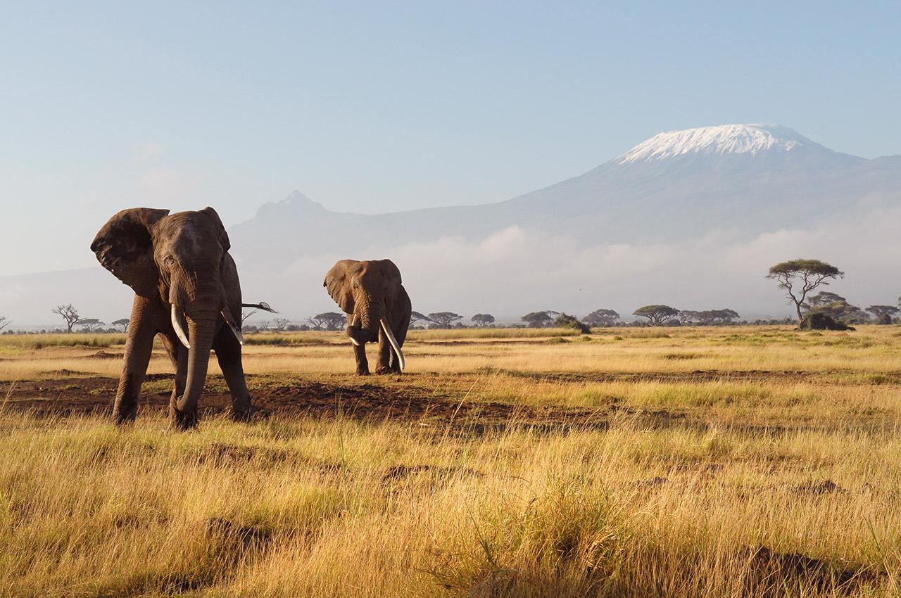 Explorando Quênia