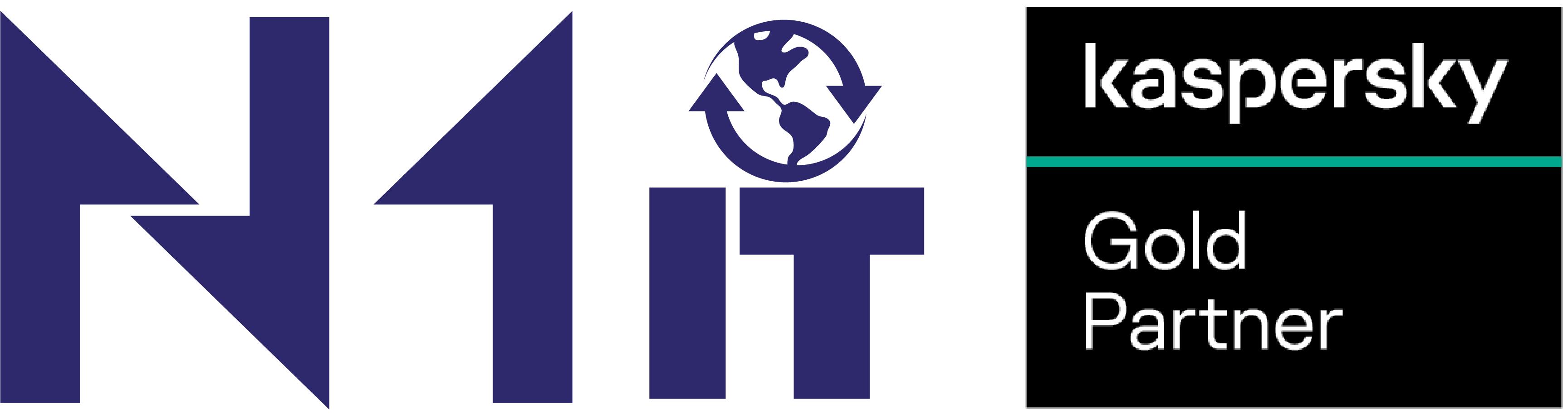 Logo N1 IT