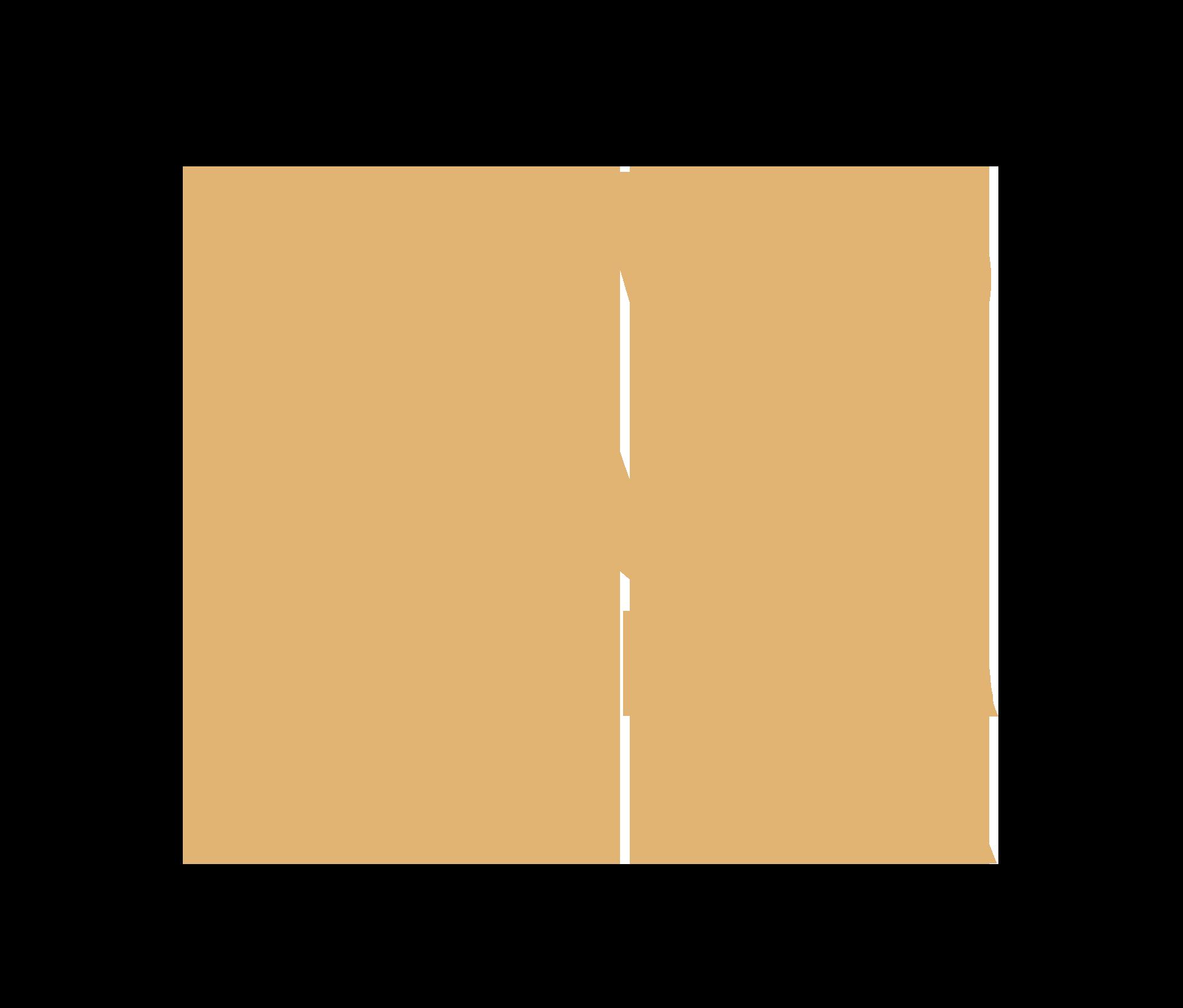 Logo - Novo Lar