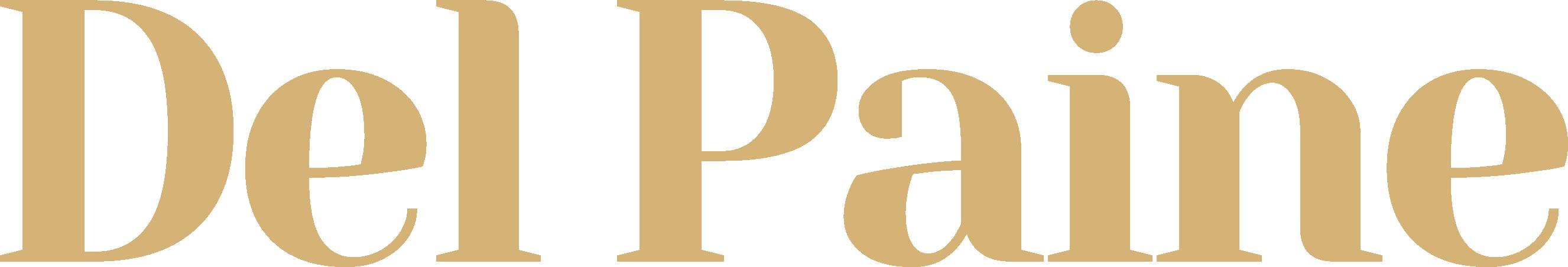 Del Paine - logo