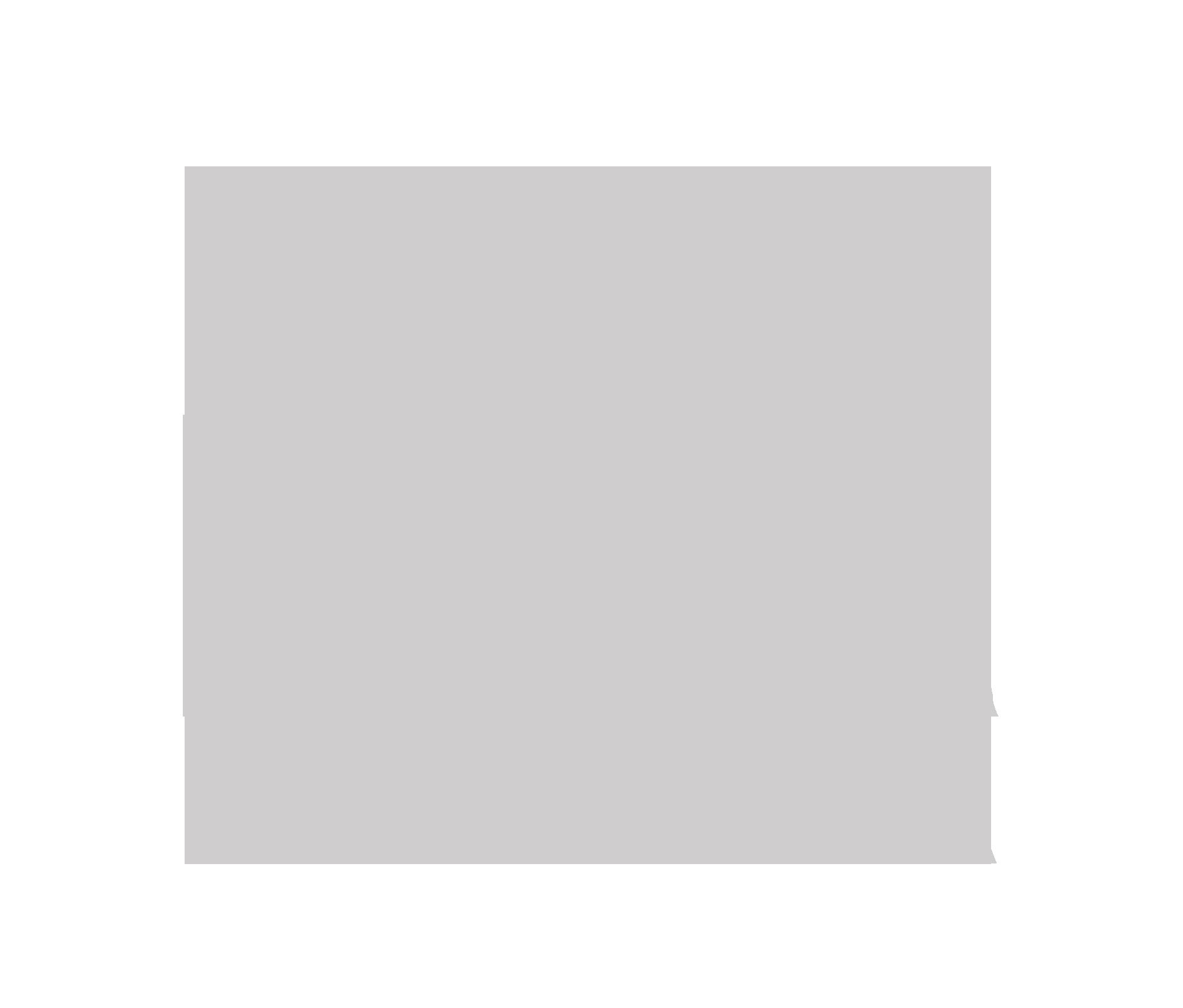 Logo Novo Lar Capão