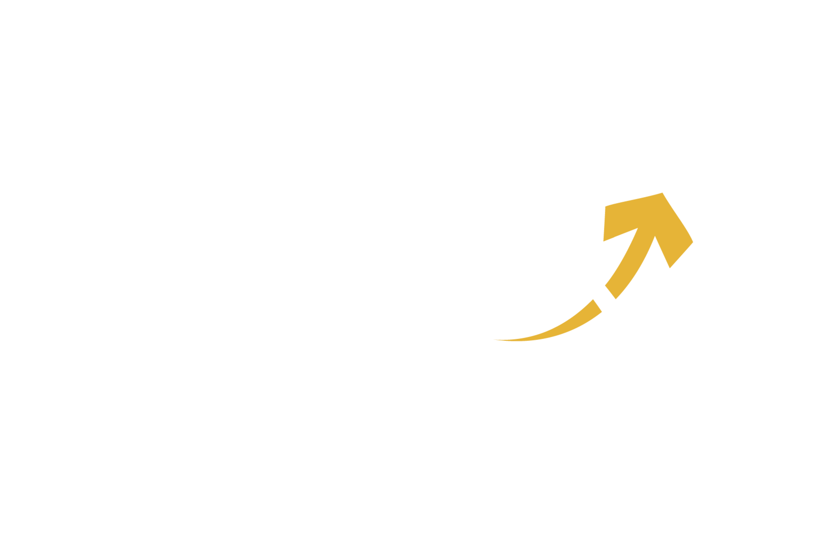 Logo da empresa Ibmex