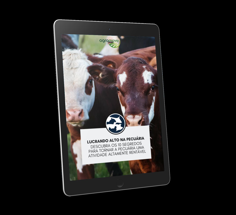 e-book Lucrando Alto na Pecuária