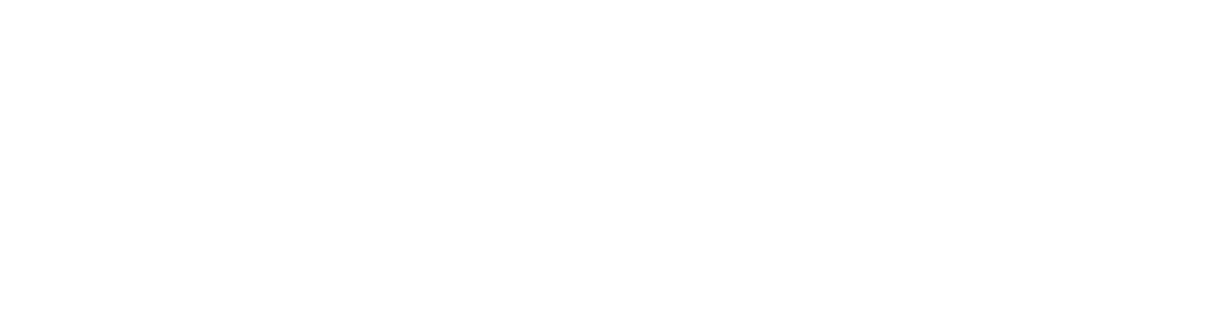 Logo JH Mizuno