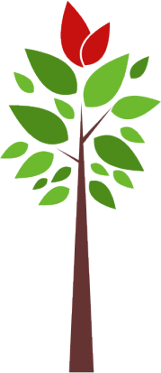 árvore mogno